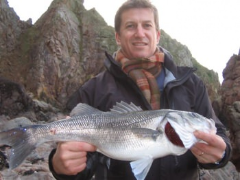 alderney bass