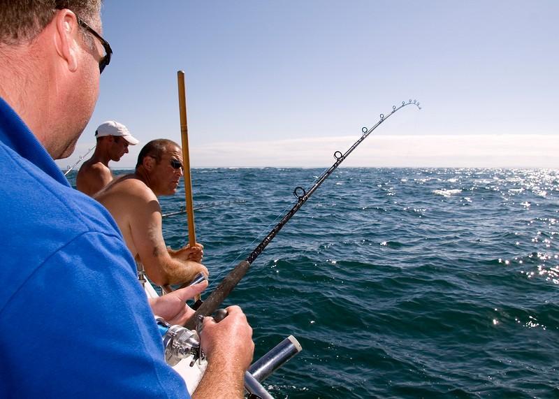daiwa-tournament-global-boat-rod-005