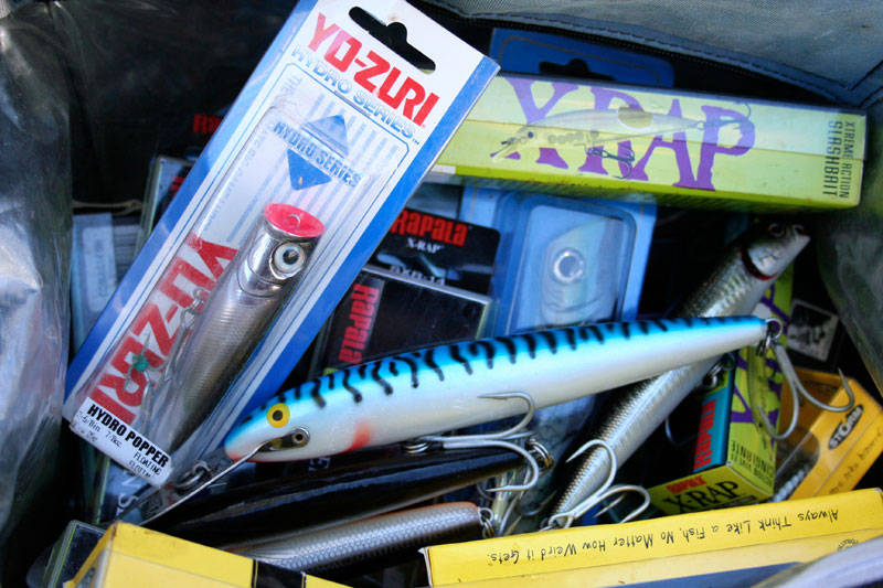 a selection of hard plastic plugs for Alderney bass