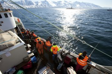 charter boat fishing european championships at Dalvik