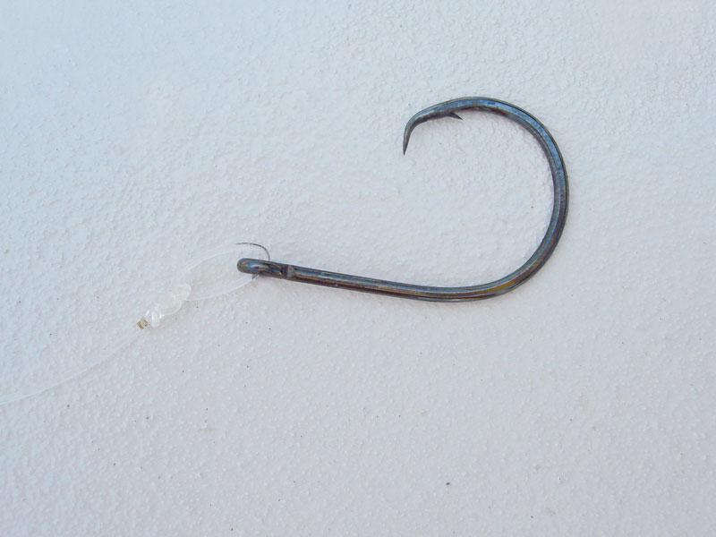 a large cirle hook for tarpon