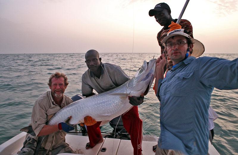a Guinea-Bissau tarpon