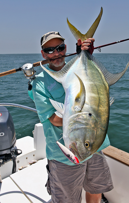 a jack from Guinea-Bissau on a lure