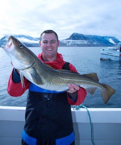an Icelandic cod