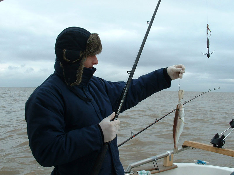 a whiting taken uptiding with a large grip lead