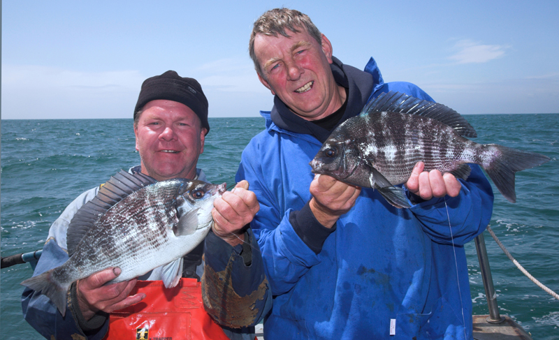 Dickie and Chris with Littlehampton black bream