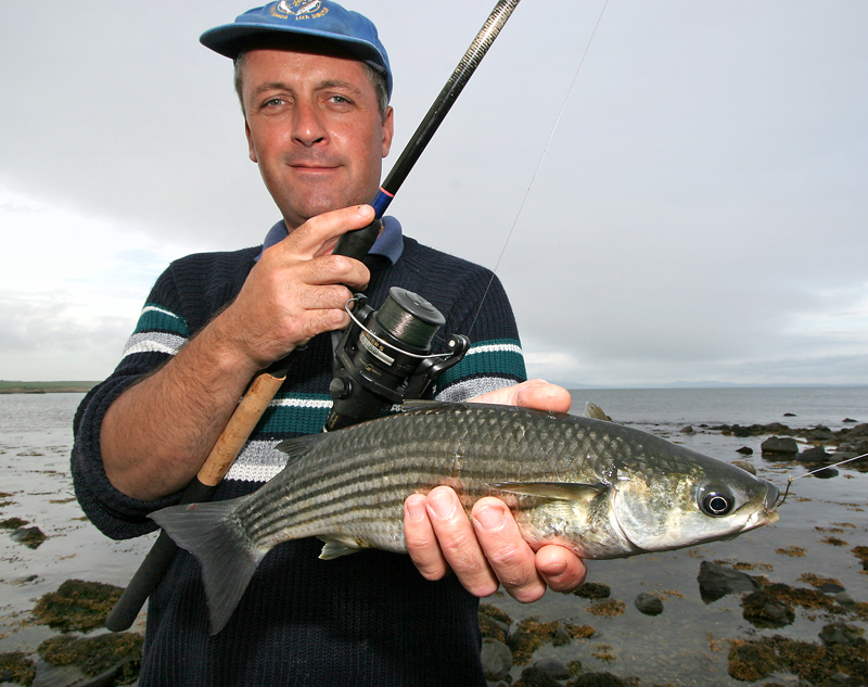 a nice thick lipped mullet for Steve Walker