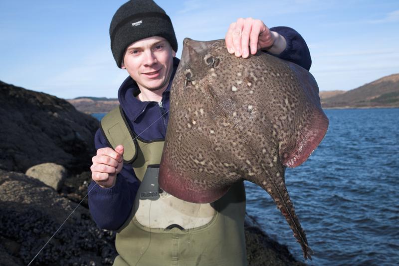 Shaun Cumming with a Loch Sunart thornback ray
