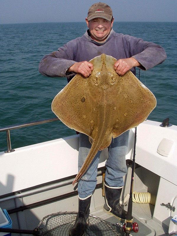 a blonde ray on the Penn Waveblaster Evo rod