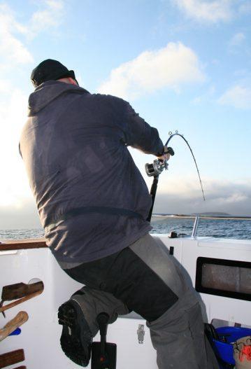 a Daiwa 3-piece Kenzaki Braid Special boat rod takes the strain