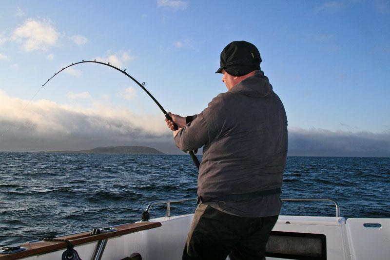 Daiwa 3-piece Kenzaki Braid Special boat rods curves to a halibut