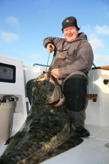 a halibut taken on a Daiwa 3-piece Kenzaki Braid Special boat rod