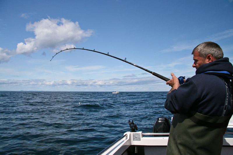 Daiwa 3-piece Kenzaki Braid Special boat rods bent with a fish