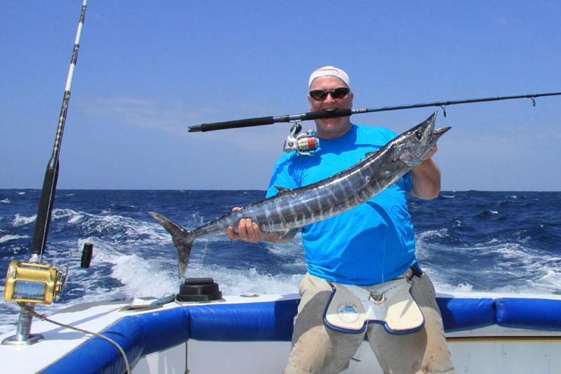 wahoo taken on the FOX Sailfish Trek Spin rod