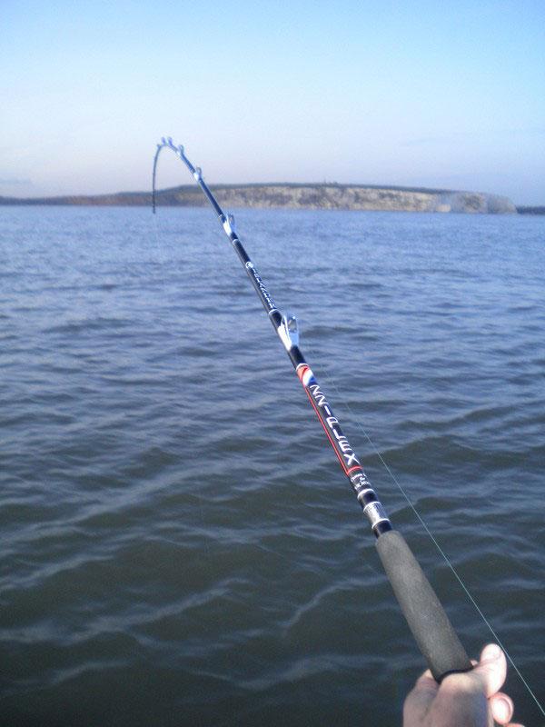 Zziplex Islander boat rod in action