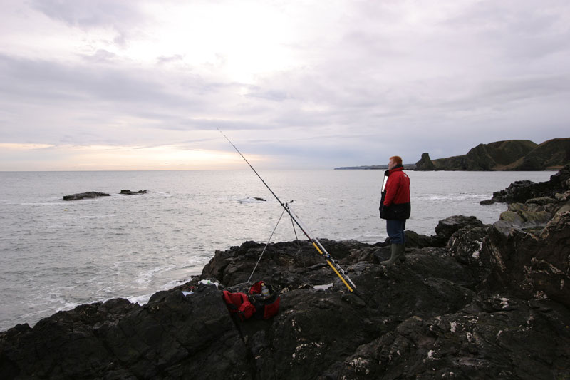 an angler on the rocks fishing for cod at Muchalls