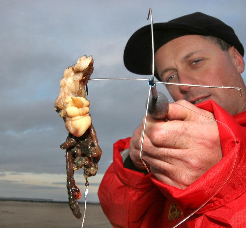 Steve Walker with a big shellfish and lug bait for Tees cod
