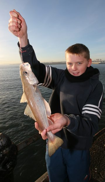 a youngster with a Roker pier whiting