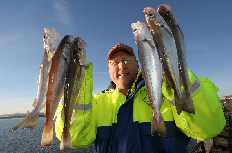 an angler with half a dozen Roker pier whiting