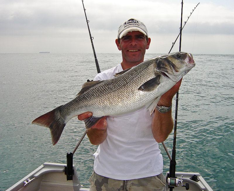 a specimen boat caught bass for Matt Brook