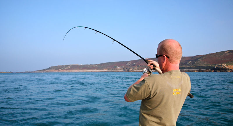 angler's rod bends as bass runs
