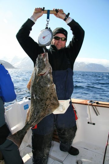 a Norwegian halibut on the scales
