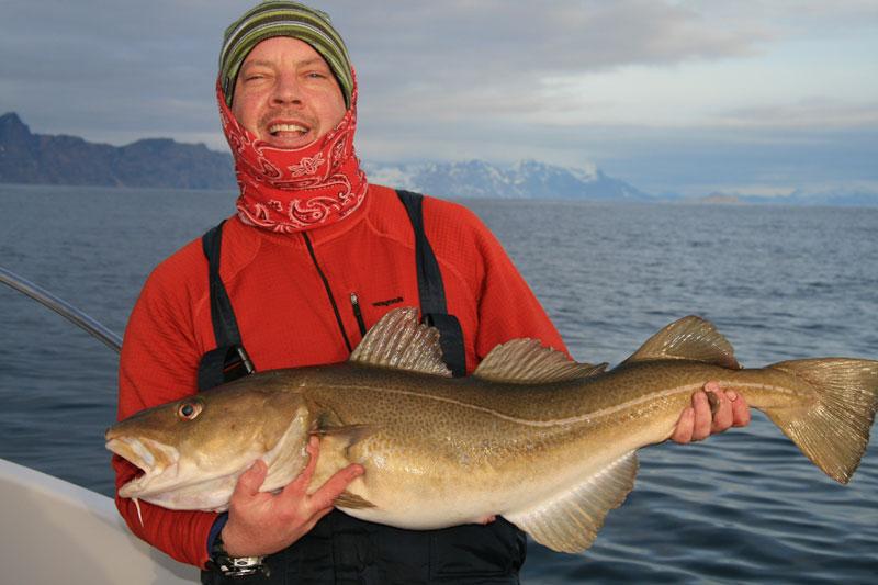 a cod from Vannoya