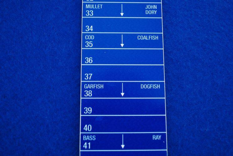 minimum fish size ruler
