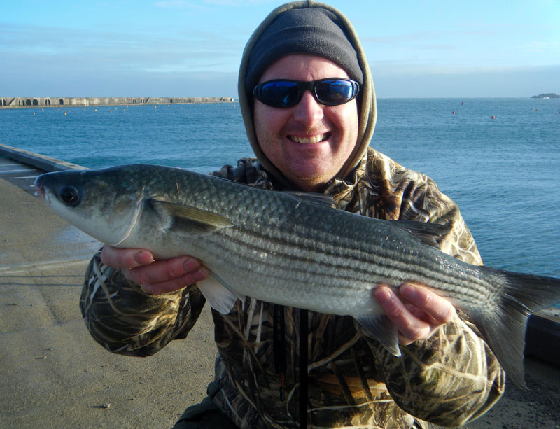 an Aldeney thick lipped mullet for Mark Harding