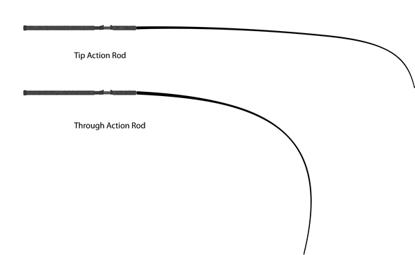 Sea Angling for Beginners - Rod actions