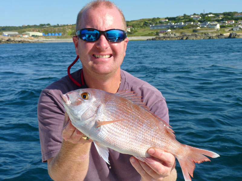 alderney species hunt couch's bream
