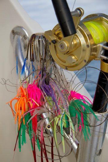 Antigua Fishing reel lures