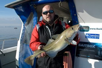 Baitbox Humber Cod Open 2012 catch