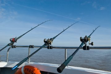 Baitbox Humber Cod Open 2012 rods