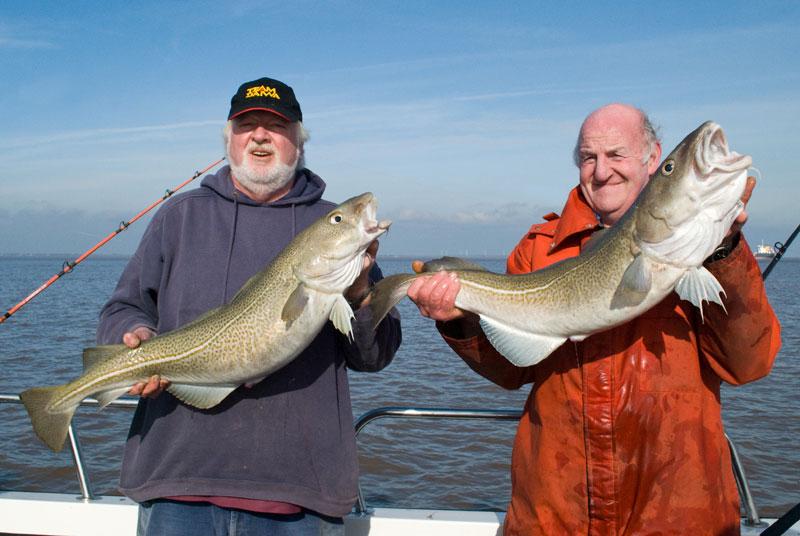 Baitbox Humber Cod Open 2012 winner runner-up fish