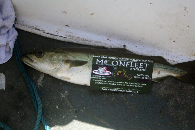 manx fishing festival pollack