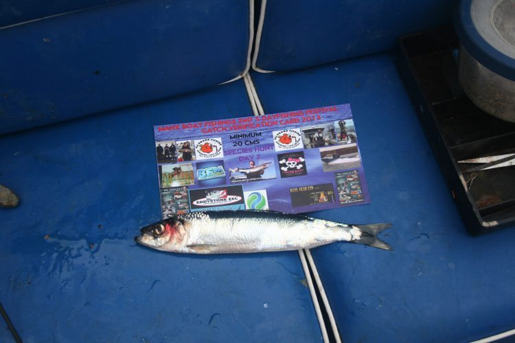 manx fishing festival herring