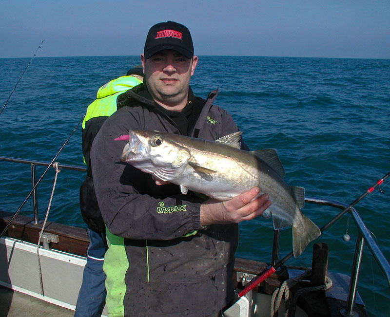 a Western Isles pollack on the Redgill EVO