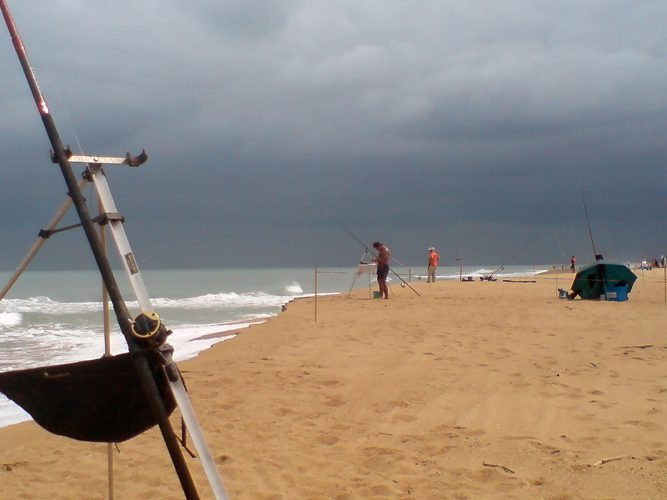 Competition Progression Within the SFSA beach