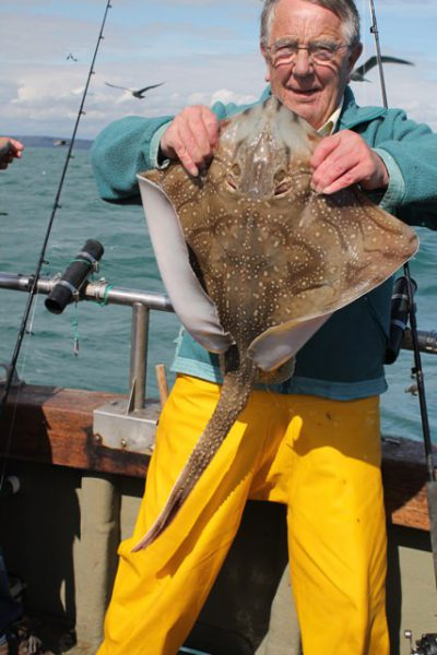 weymouth species hunt undulate