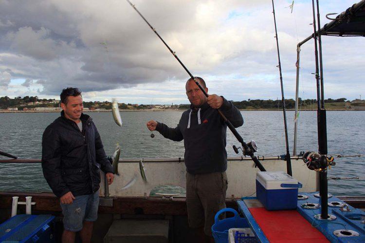 weymouth species hunt mackerel