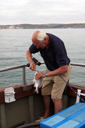 weymouth boat atlanta species