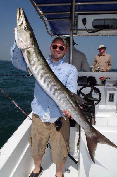 a barracuda taken trolling