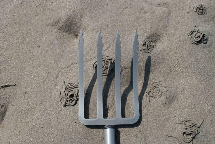 Fiskars Power Digging Fork flat tines