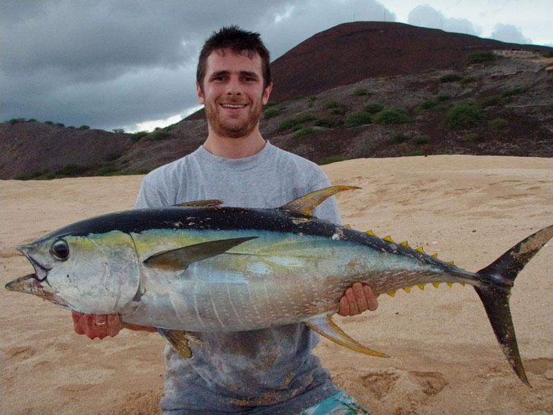 Ascension Island Shore Fishing yellowfin tuna