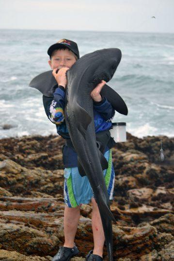 Daniel Dickinson South Africa shark