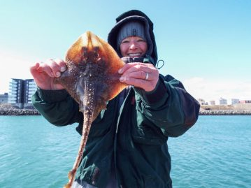 shore fishing Iceland starry ray