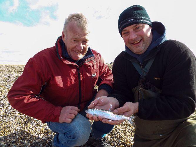 fishing St Osyth beach a beached herring