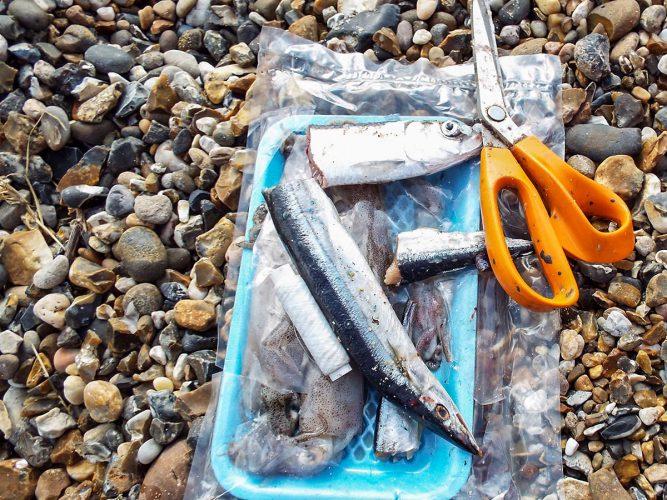 fishing St Osyth beach the baits