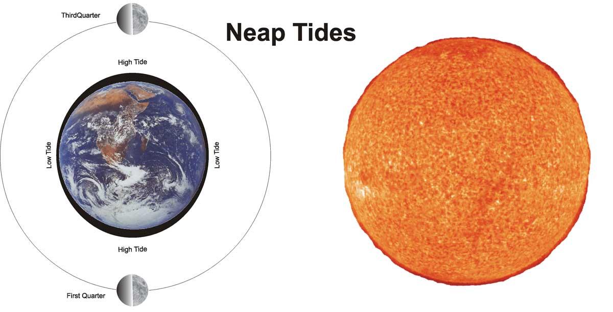 Understanding tides neap tides